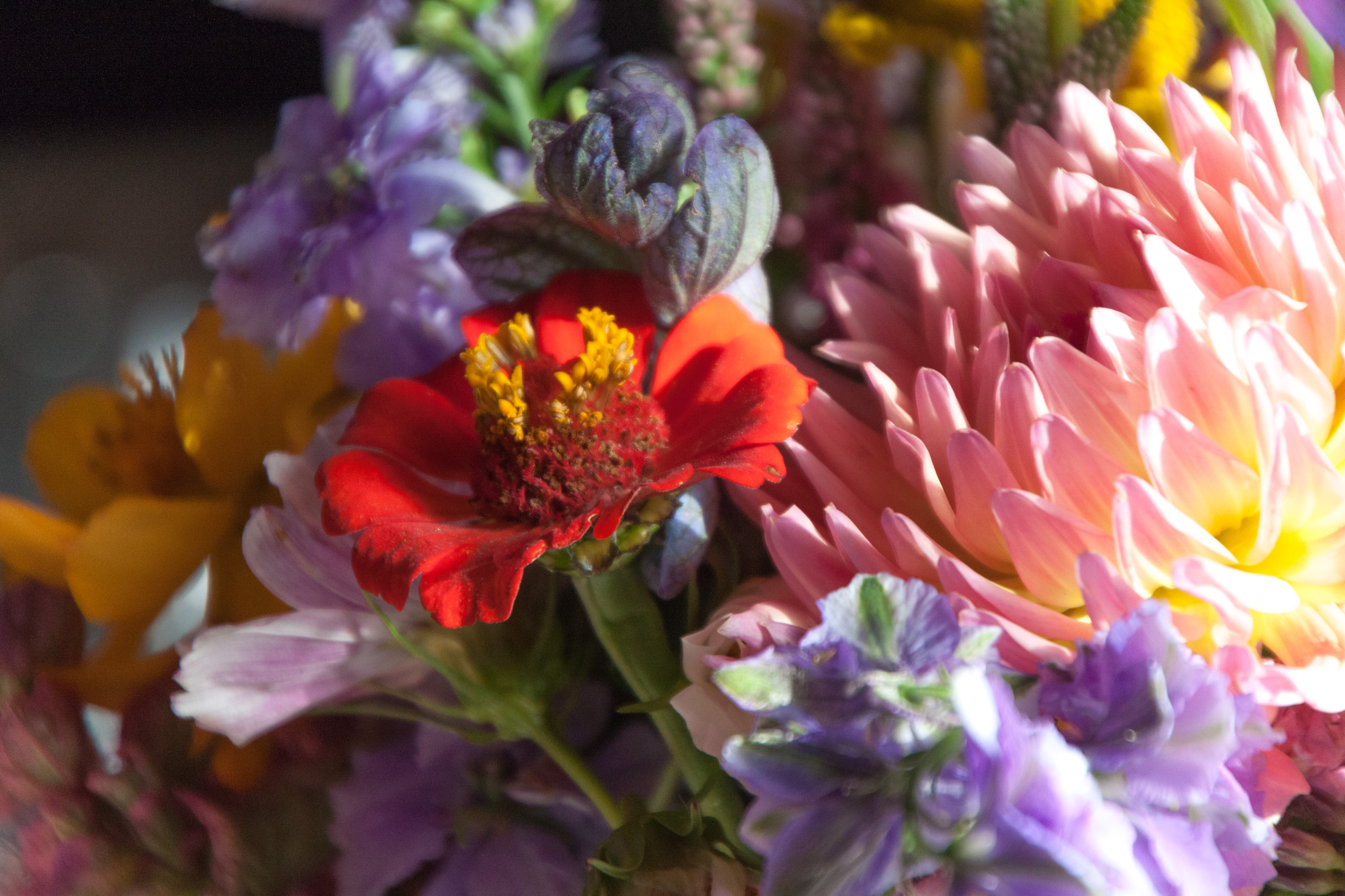Cambridge Wedding Flowers